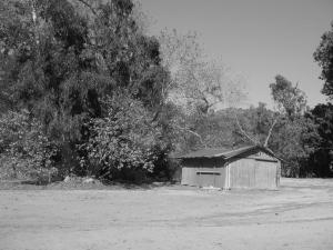 bw shack