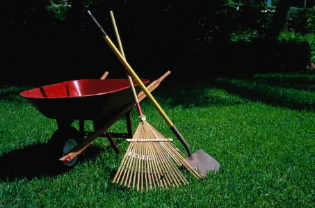 Yard work is a good distraction, but eventually we need to address the sytem